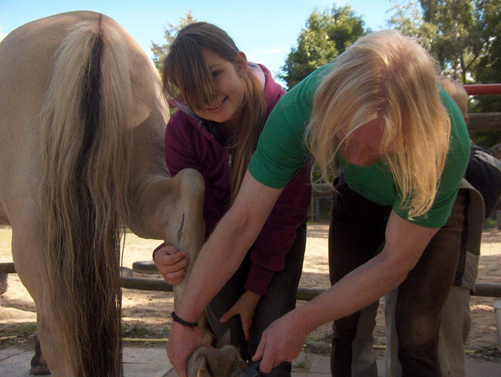 Pferde AG: Pflege der Hufe