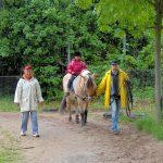 Reiterhof: Kinderreiten mit Führung