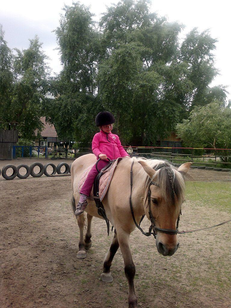 Reiterhof: Führung auf dem Pferderücken