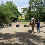 Reiterhof: Aufgesattelt
