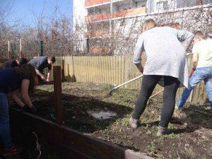 Clubbesucher und Mitarbeiter arbeiten im Garten