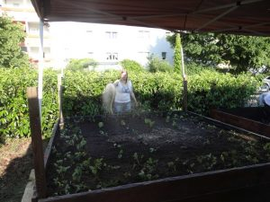 Peggy gießt Pflanzen