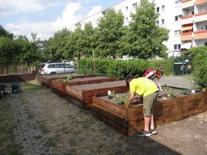 Kinder pflanzen Planzen