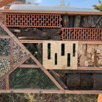 Galerie zeigt Arbeitsschritte beim Bau eines Insektenhotels.